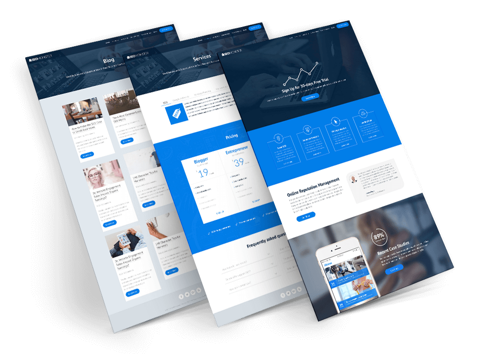 seomonster divi child theme